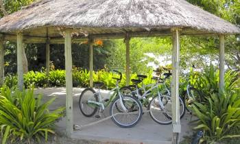 a bicycle parked in front of a house