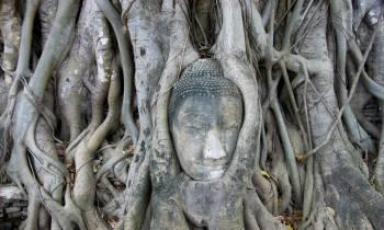 Ayutthaya Wat Mahathad