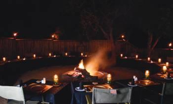 Safari Dining