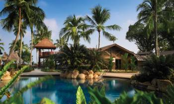 a resort near the water lined with palm trees