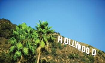 a sign in front of a tree with Hollywood Sign in the background