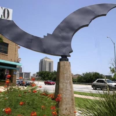 Nightwing Bat Statue