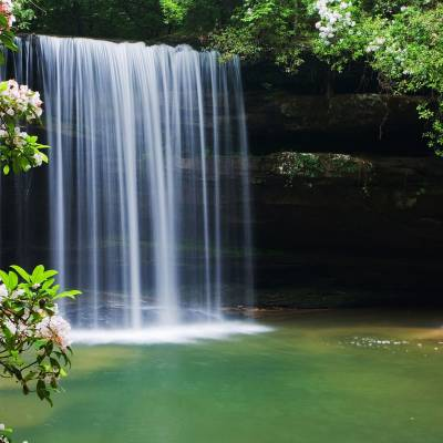 Caney Creek Falls, Bankhead National Forest