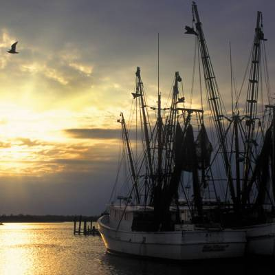 Shrimpboats in the Outer Banks