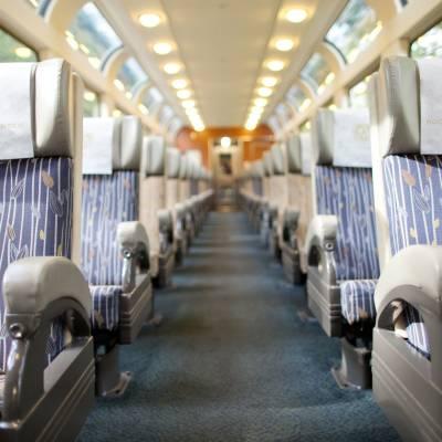 SilverLeaf Train Car