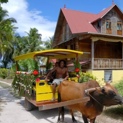 Local Cart, La Digue, Seychelles