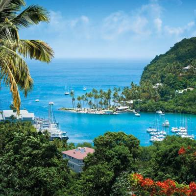 a body of water surrounded by palm trees with Marigot Bay in the background