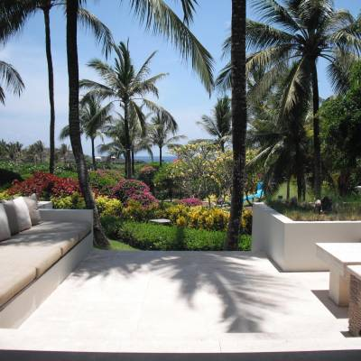 a bench next to a palm tree