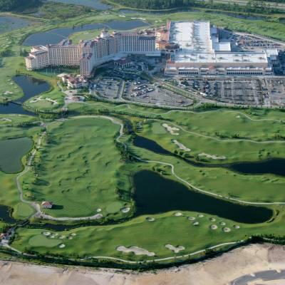 a large green landscape