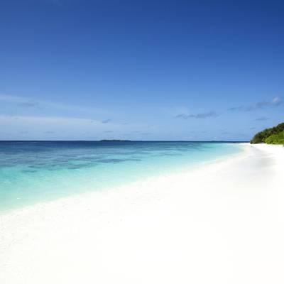 Reethi Faru Beach