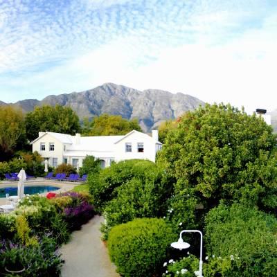 a garden in front of a mountain