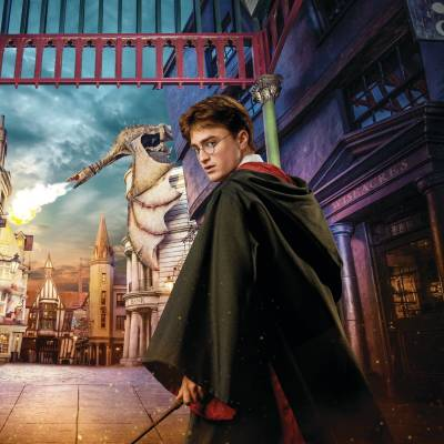 Wizarding World of Harry Potter ™ Diagon Alley