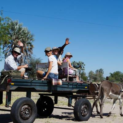 Donkey ride on a family safari holiday