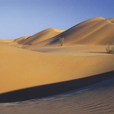 Muscat desert
