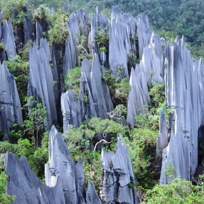 a group of men standing next to Gunung Mulu National Park