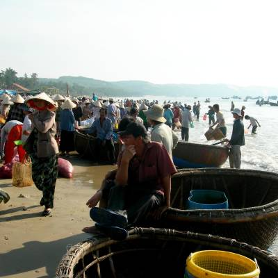 Traditional fishing boats