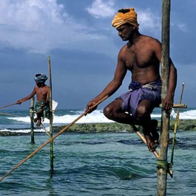 Stilt fisherman in Galle