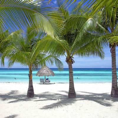 South Palms