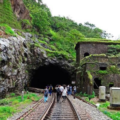 Dudhsagar Falls trainline