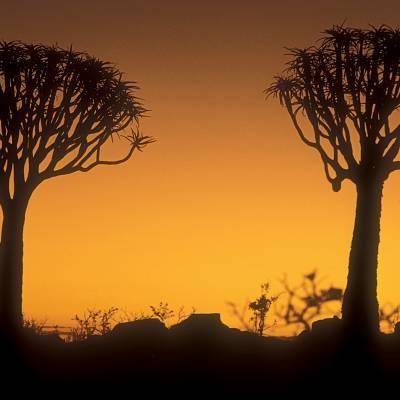 Sossuesvlei, Namibia