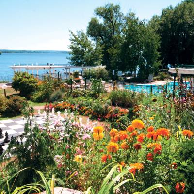a close up of a flower garden in front of a body of water