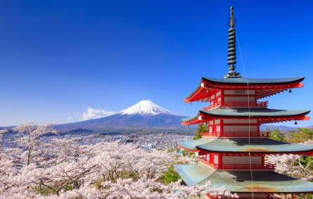 Mount Fuji with Chureito Pagoda in Spring