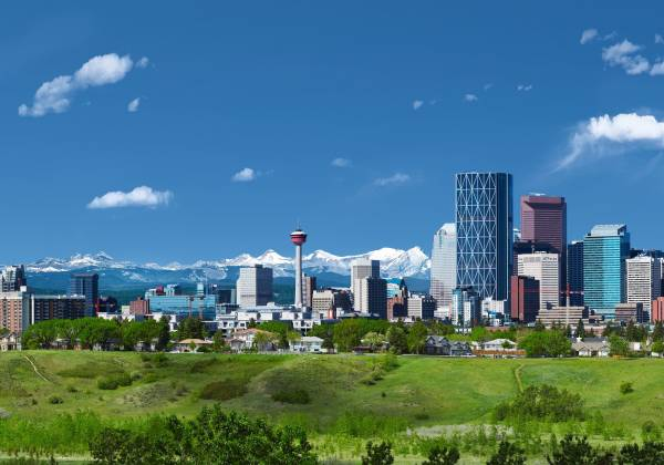 a view of a city with tall buildings in a grassy field