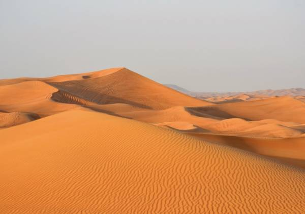 Panoramic view of a golden desert