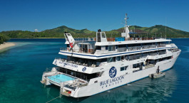 Blue Lagoon Cruises: Escape to Paradise Cruise