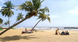 eine Gruppe von Menschen an einem Strand mit einer Palme