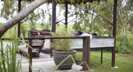 ein Stuhl, der vor einem Baum sitzt