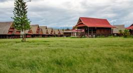 ein Haus mit Grasfeld