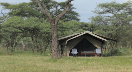Auu00dfenansicht eines Gu00e4stezeltes im Ndutu Wilderness Tented Camp, su00fcdliches Serengeti in Tansania