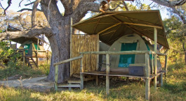 Exterior view of tent at Oddballs Camp in Okavango Delta, Botswana