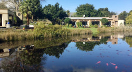 Auu00dfenansicht des Lily Pond Country Lodge Hotel, Garden Route in Su00fcdafrika