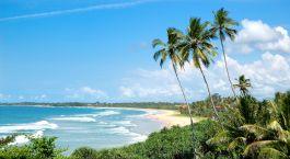 Luftaufnahme vom Meer und Strand mit Palmen in Bentota, Sri Lanka