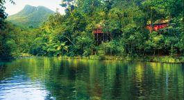 ein Gewässer, umgeben von Bäumen