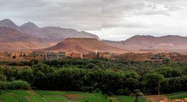 eine große grüne Wiese mit einem Berg im Hintergrund