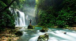 ein großer Wasserfall in einem Wald
