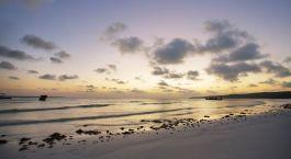 eine Gruppe wolkenveranden im Sand am Strand