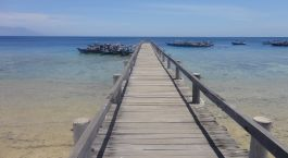 ein hölzerner Pier neben einem Gewässer