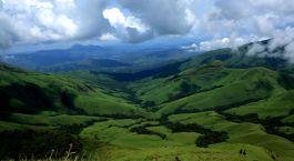 eine Schafherde, die auf einem üppigen grünen Hügel steht