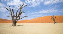 ein Sandstrand