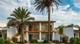 eine Palme vor einem Haus