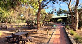 eine leere Parkbank neben einem Baum