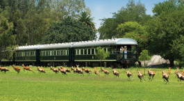 Auu00dfenansicht des Rovos Rail: Pretoria u2013 Kapstadt, Su00fcdafrika