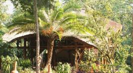 Auu00dfenansicht im Kibale Forest Camp Hotel in Kibale, Uganda