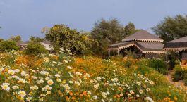 Auu00dfenansicht von Orchard Resort, Pushkar in Nordindien