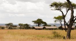Safari-Zelte in der Ferne im Kati Kati im Zentrale Serengeti, Tansania
