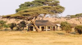 Auu00dfenansicht von Namiri Plains Tented Camp im Zentrale Serengeti in Tansania